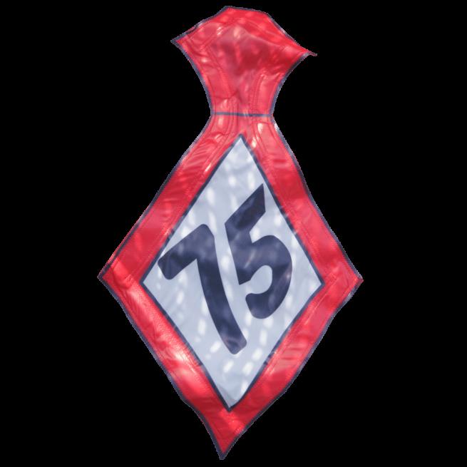 Stropdas 75